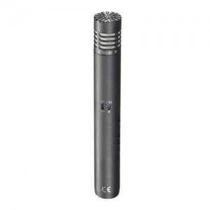 Hypercardioid Condenser Modular Microphone